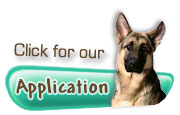Click for our Application
